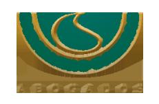 logo_webpie_CaballeroSalinas